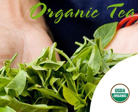 USDA Organic Tea